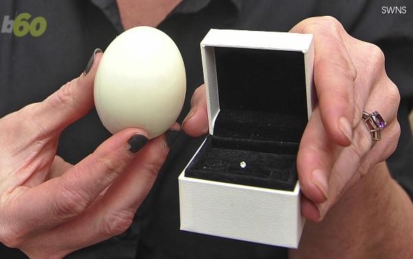 ゆで卵を食べようとしたら中から1粒のダイヤモンドが・・・