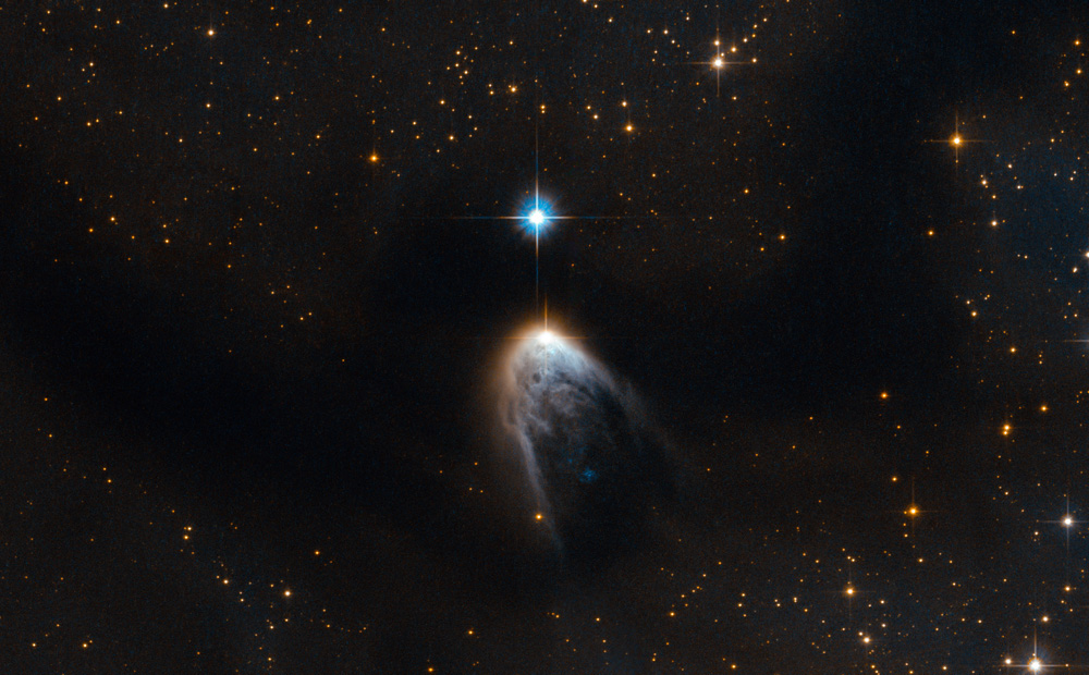 "This new Hubble image shows IRAS 14568-6304, a young star that is cloaked in a haze of golden gas and dust. It appears to be embedded within an intriguing swoosh of dark sky, which curves through the image and obscures the sky behind. This dark region is known as the Circinus molecular cloud. This cloud has a mass around 250 000 times that of the Sun, and it is filled with gas, dust and young stars. Within this cloud lie two prominent and enormous regions known colloquially to astronomers as Circinus-West and Circinus-East. Each of these clumps has a mass of around 5000 times that of the Sun, making them the most prominent star-forming sites in the Circinus cloud. The clumps are associated with a number of young stellar objects, and IRAS 14568-6304, featured here under a blurry fog of gas within Circinus-West, is one of them. IRAS 14568-6304 is special because it is driving a protostellar jet, which appears here as the ""tail"" below the star. This jet is the leftover gas and dust that the star took from its parent cloud in order to form. While most of this material forms the star and its accretion disc — the disc of material surrounding the star, which may one day form planets — at some point in the formation process the star began to eject some of the material at supersonic speeds through space. This phenomenon is not only beautiful, but can also provide us with valuable clues about the process of star formation. IRAS 14568-6304 is one of several outflow sources in the Circinus-West clump. Together, these sources make up one of the brightest, most massive, and most energetic outflows ever reported. Scientists have even suggested calling Circinus-West the ""nest of molecular outflows"" in tribute to this activity. A version of this image was entered into the Hubble's Hidden Treasures image processing competition by contestant Serge Meunier."