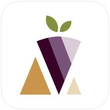 Hi.Q app logo