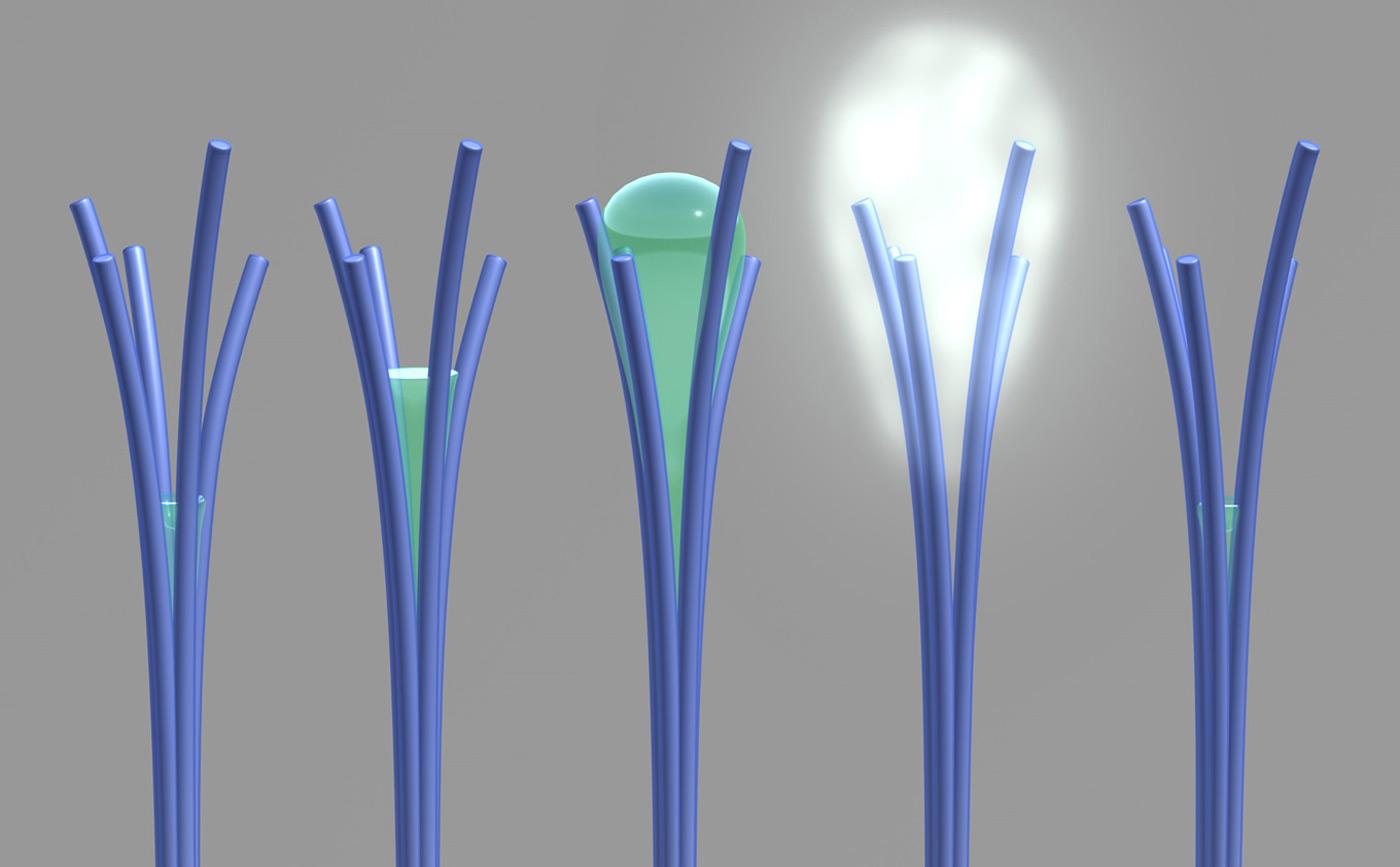 nanorods-water-pnnl.jpg
