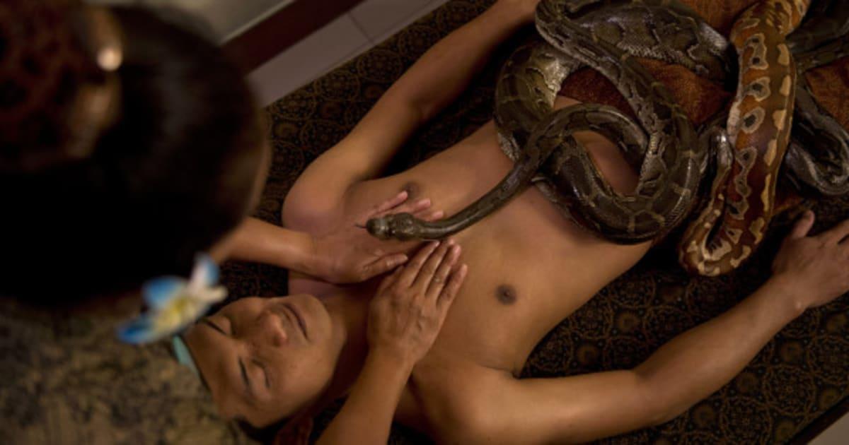 Минет змеи порно смотреть онлайн