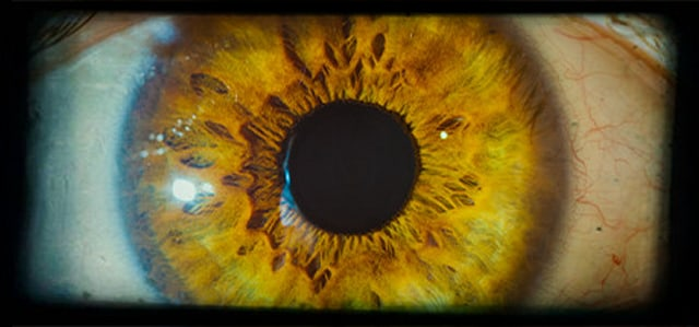 """An image of an eye from the """"Project A"""" Steam page."""