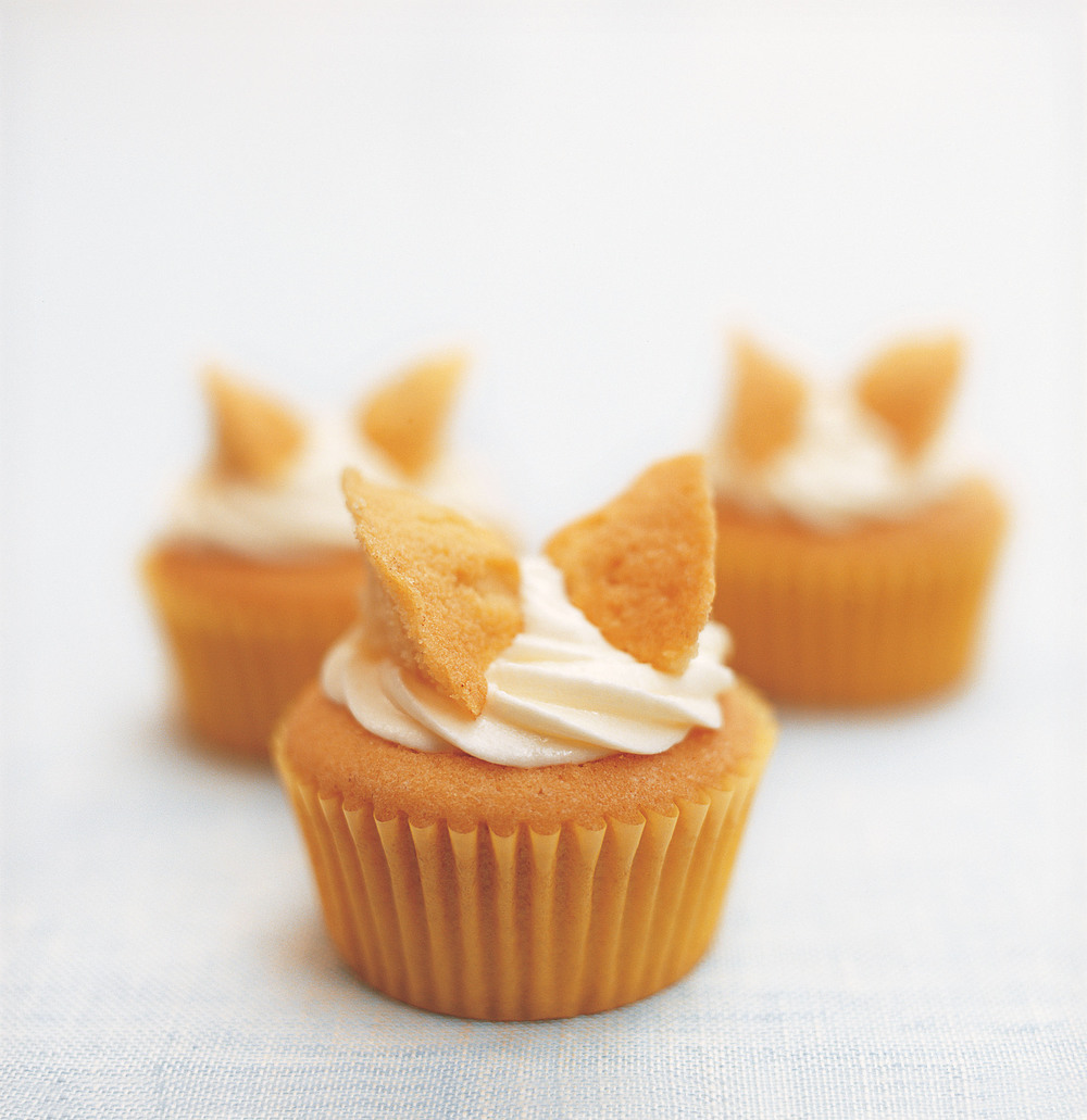 Butterfly Cupcake Images : butterfly cupcake - DriverLayer Search Engine