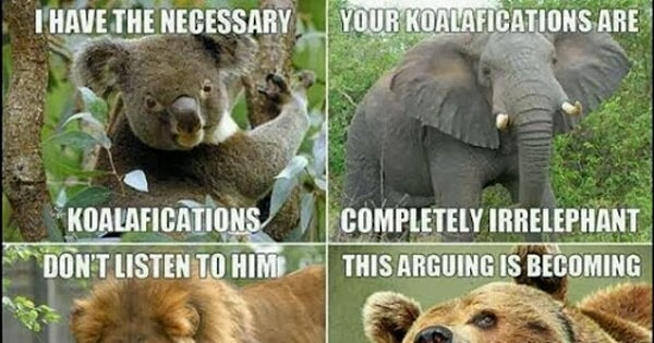 Aninimal Book: We Can't Tell If These Are the Worst Animal Puns or the ...