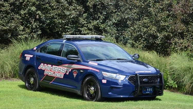 ford police interceptor sedan pursuit rated used for autos post. Black Bedroom Furniture Sets. Home Design Ideas