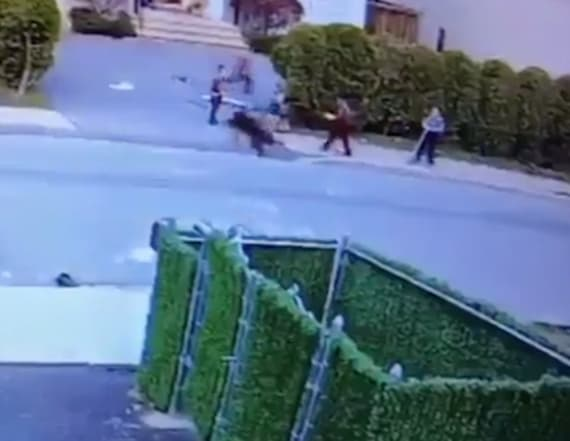 Disturbing video shows pit bull mauling child