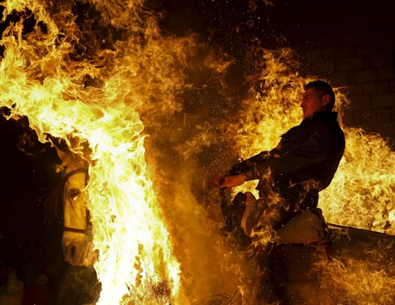 Daredevil horses walk through fire
