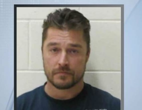 Chilling details emerge on Chris Soules' fatal crash