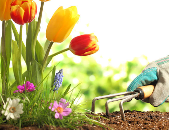 10 products to help grow your spring garden