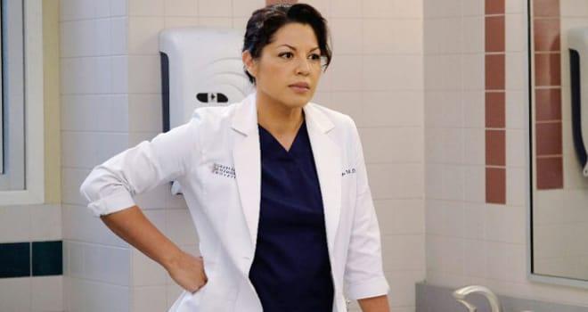 'Grey's' Alum Sara Ramirez Slams ABC & 'The Real O'Neals' for Bisexuals Joke