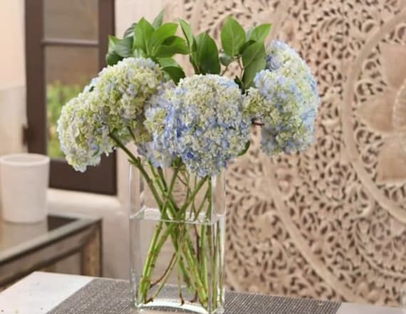 7 ways to make your hydrangeas last longer