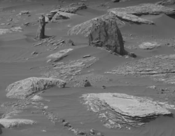 UFO hunter spots 'ancient tree stump' on Mars