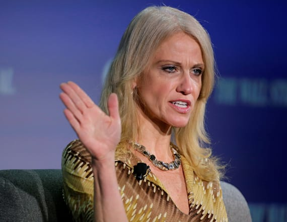 Conway slams Trump protesters with unlikely diss