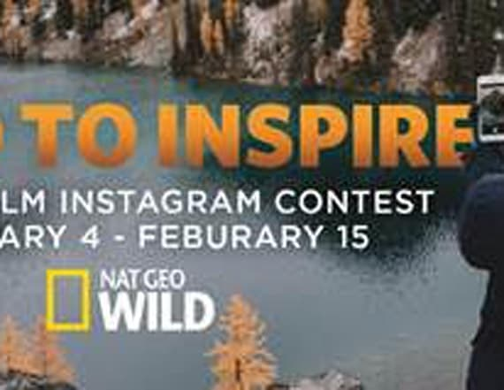 Instagram contest could win you free trip to Africa