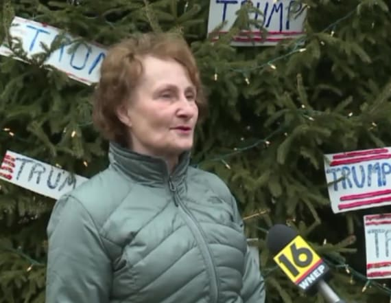'Trump Tree' honors 45th president in mountain top
