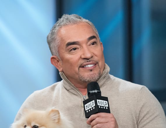 Cesar Millan thinks millennials shouldn't own dogs