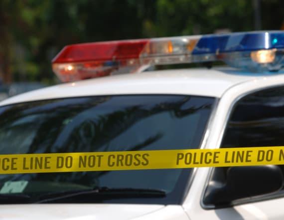 US Jewish centers report wave of hoax bomb threats