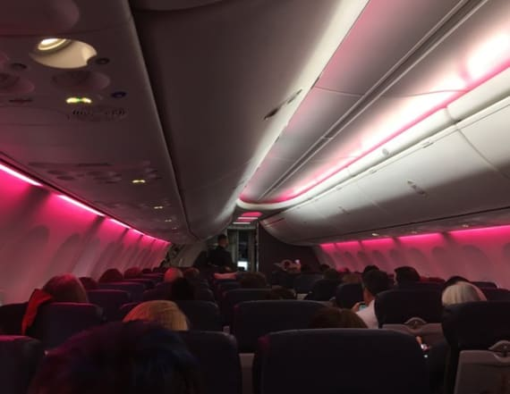 Plane of Women's March supporters turns lights pink