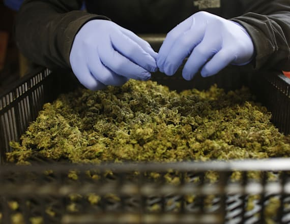 Legalizing medical pot could save taxpayer dollars