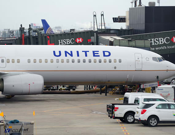 United domestic flights grounded due to 'IT issue'