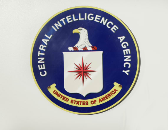 Veteran CIA analyst quits agency over Trump policy