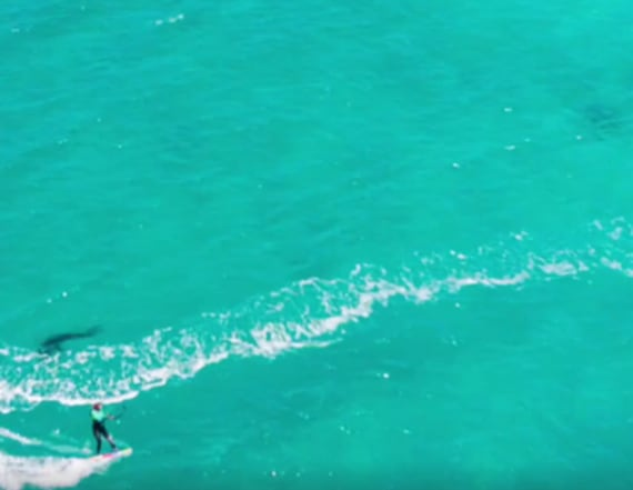Scary footage shows woman being stalked by shark