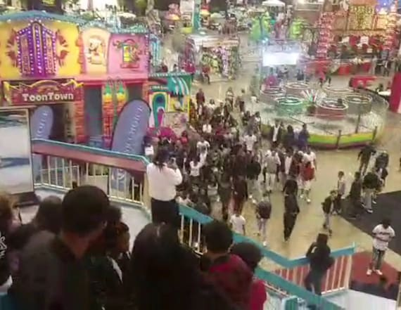 Huge 'flash mob' fight breaks out at amusement park