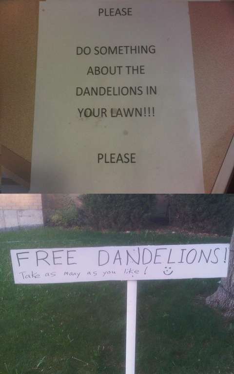 free dandelions funny sign, how to deal with annoying neighbors