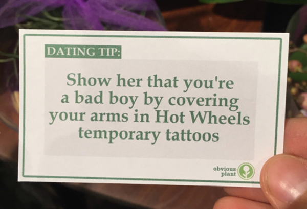 Fuunny, Sex and Dating, Hilarious Free Dating Advice, Obvious Plant