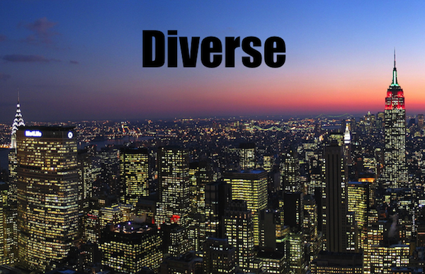 50 words for 50 states, new york diverse