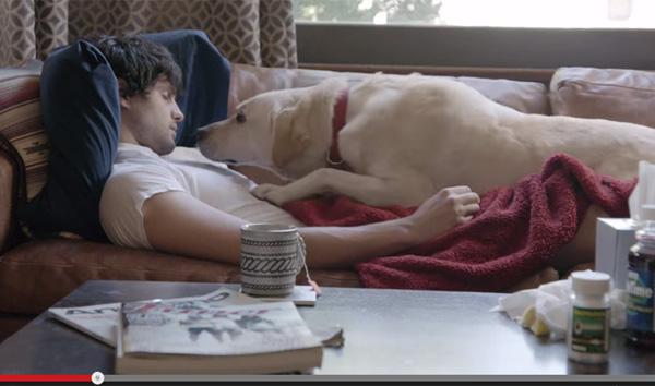 バドワイザーの飲酒運転撲滅CMが胸を打つ感動の出来 犬を飼ってる人は特に必見