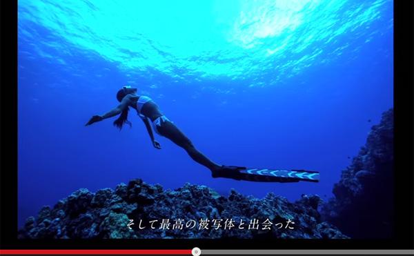 一群海豚出现在夏威夷海中!使用超高灵敏度相机拍摄的水下视频太难看了