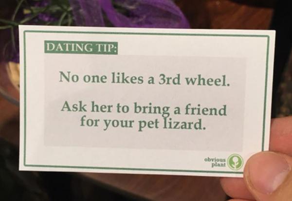 ask steve harvey dating tips