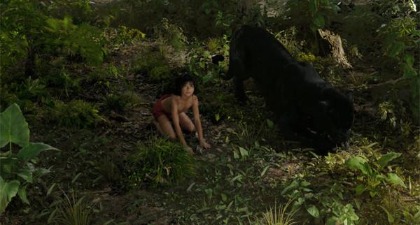 """""""丛林之书""""受到了吉卜力动画的影响! ?一个神秘的主要故事视频,Maughley的男孩第一次遇见大象"""