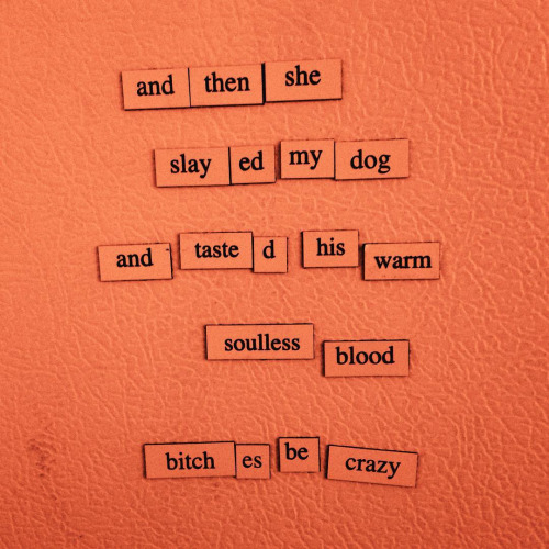 Funny Tumblr Poems, Hilarious Fridge Poems