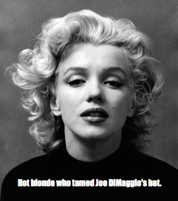 one-line summaries famous historical figures, marilyn monroe