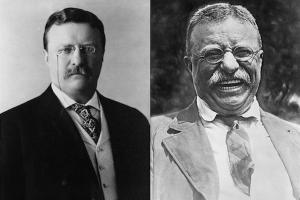 US presidents before and after term, theodore roosevelt