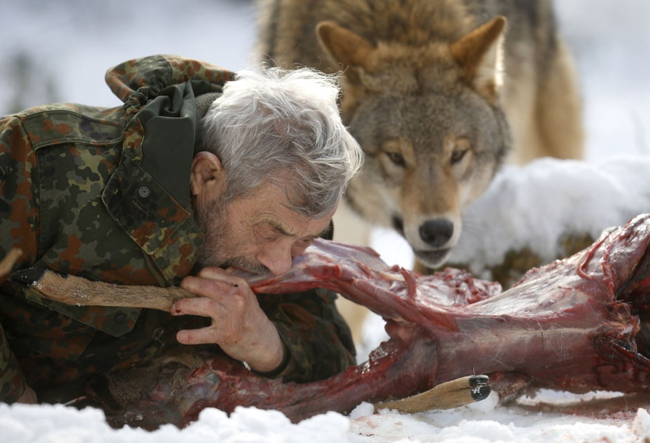 manliest photos on the internet, funny manly images, werner freund eating deer with wolf