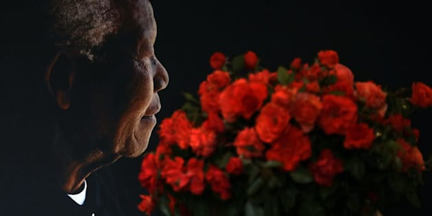 A posy of Mandela roses placed in front of a portrait of Nelson Mandela by the Nelson Mandela foundation, which promotes Mandela's legacy. The Mandela rose is expected to be sold locally and internationally and proceeds will go to the foundation. Its CEO, Sello Hatang, says Mandela appreciated gardening and cared for the environment.
