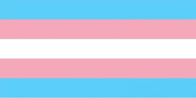 Brasil é um dos países que mais matam travestis e transexuais.