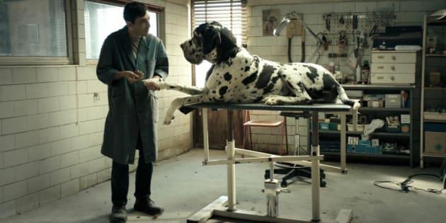 "Nomination Golden Globe: ""Dogman"" assente. ""Vice, l'uomo ..."