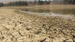 Onda de calor seca al 33% de las presas del