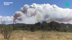 400 hectares de forêt traversés par un violent incendie dans le