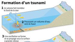 Comment se forment les tsunamis comme celui qui a touché
