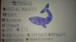 El creador de la 'ballena azul' busca