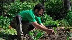 BLOG - Les réflexes à avoir pour bien entretenir son jardin pendant