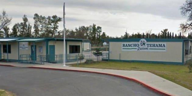 Os policiais estão investigando as regiões próximas da Escola Primária Rancho Tehama, em Corning, Califórnia, após o ataque.