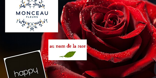 Pour la Saint-Valentin, attention aux pesticides contenus dans les roses