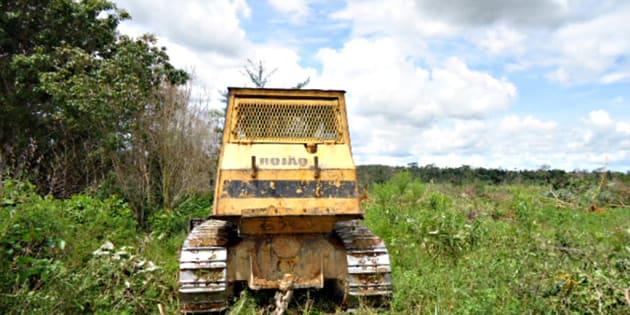 Desmatamento em área da Amazônia flagrado pelo Ibama em 2011.