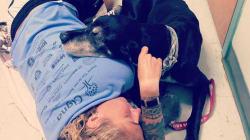 Il necrologio (rifiutato) di una donna per il suo cane dimostra come l'uomo non possa fare a meno degli